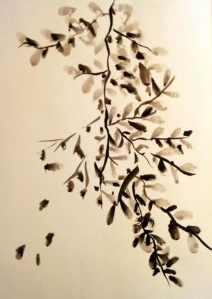 Mardi Soir - Branche
